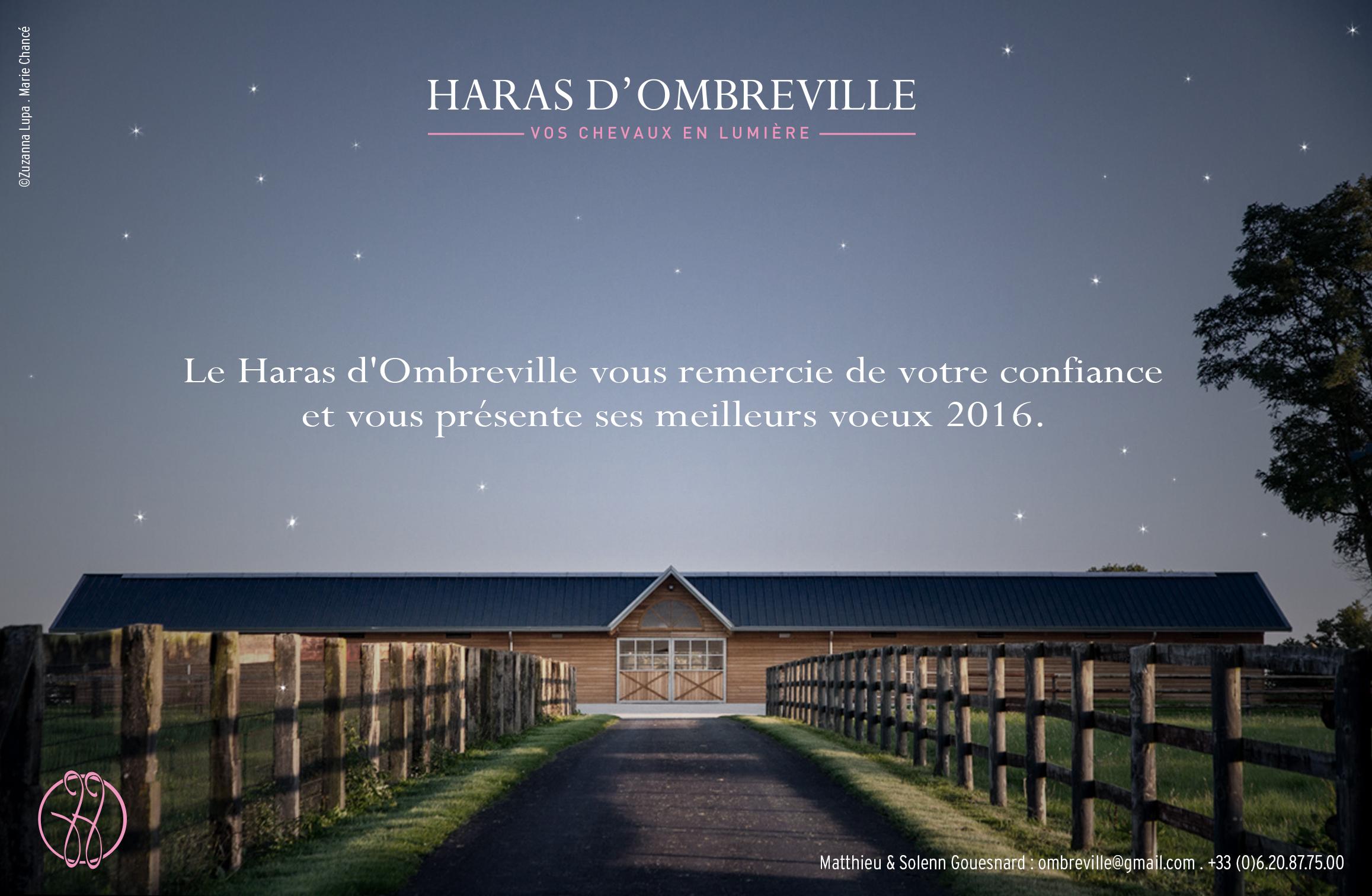 Ombreville_voeux-2016_FR-print2.jpg