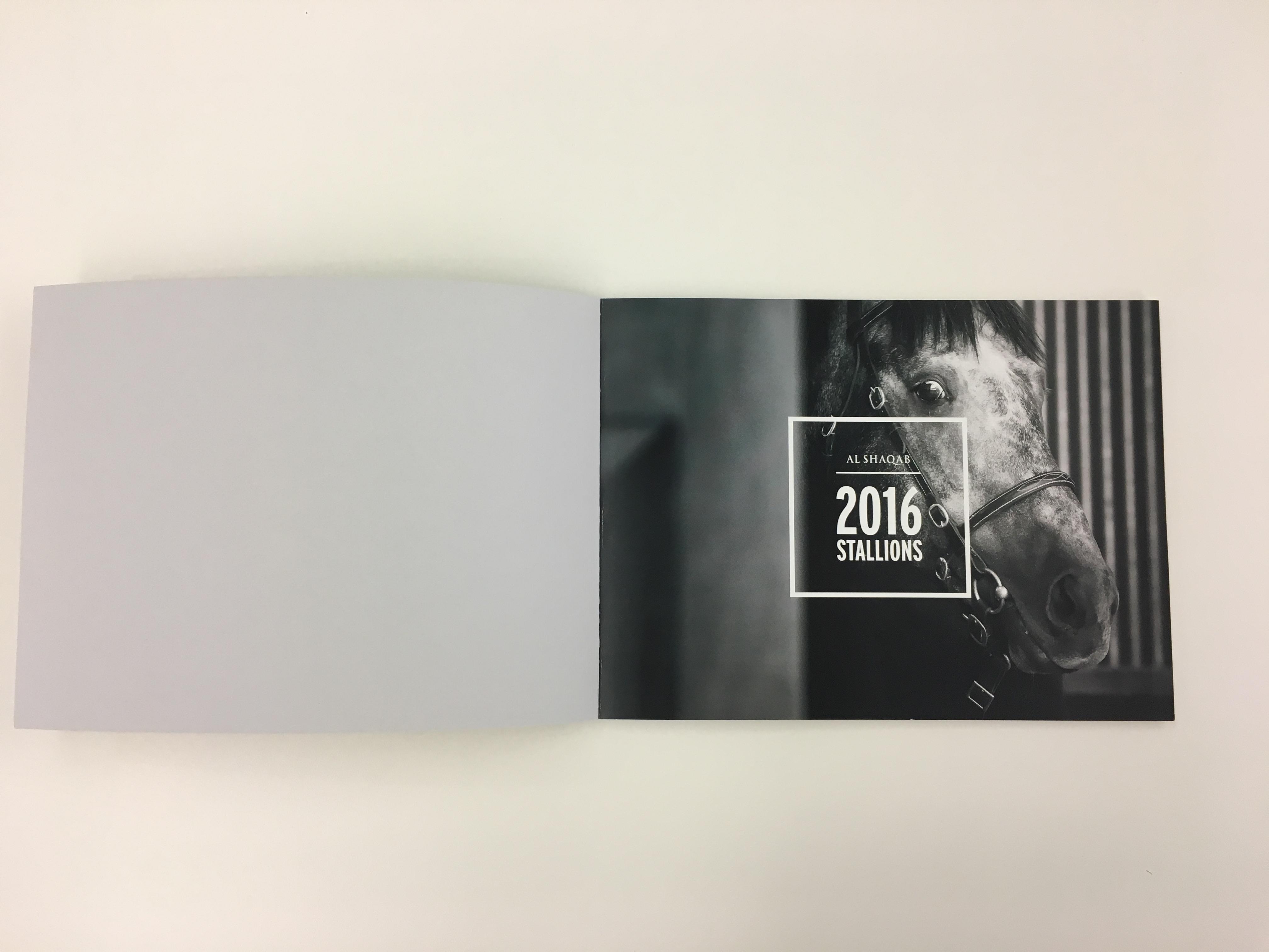 2017-02-20-16.13.26.jpg