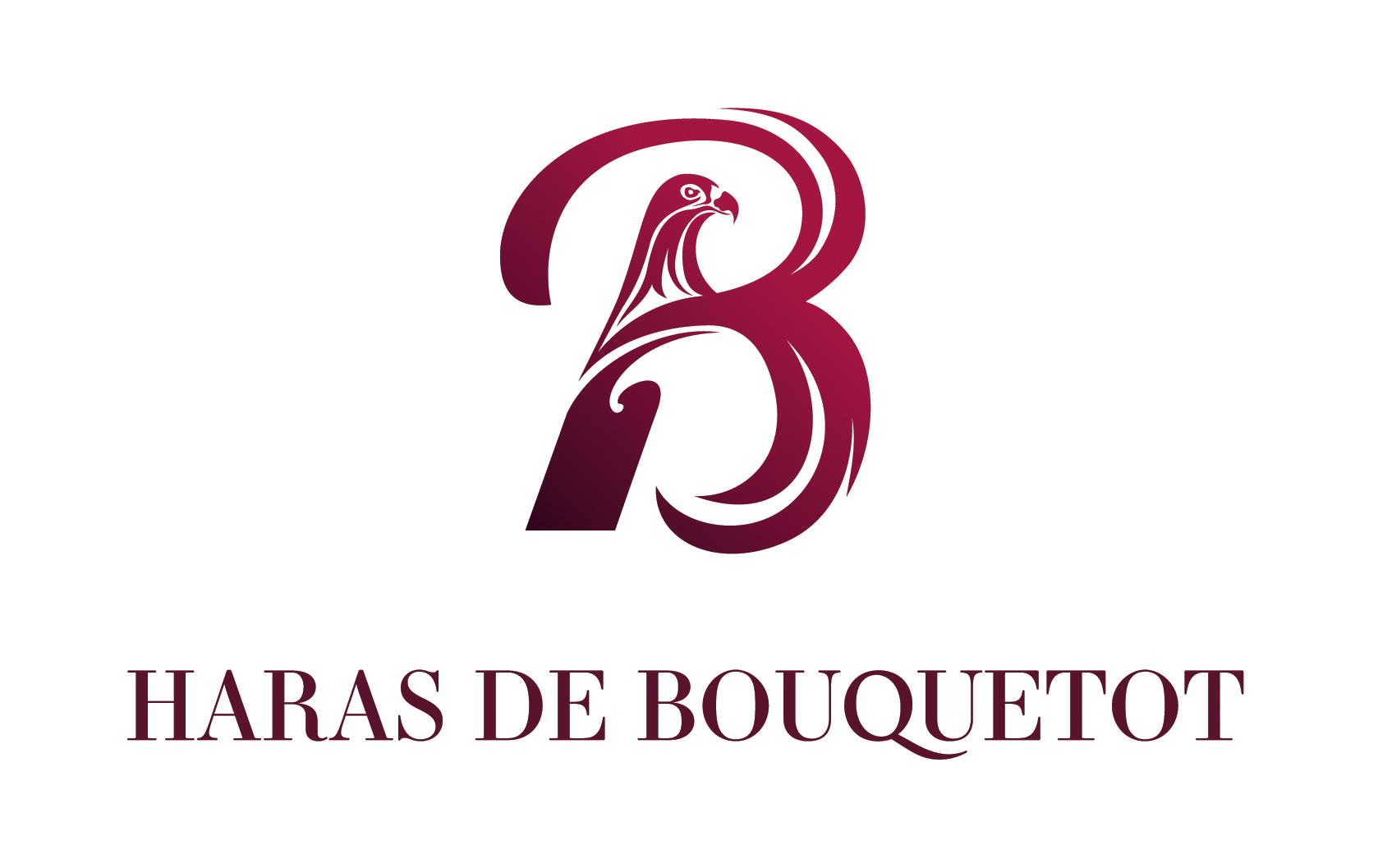 haras-bouquetot-logo-degrade-rgb.jpg