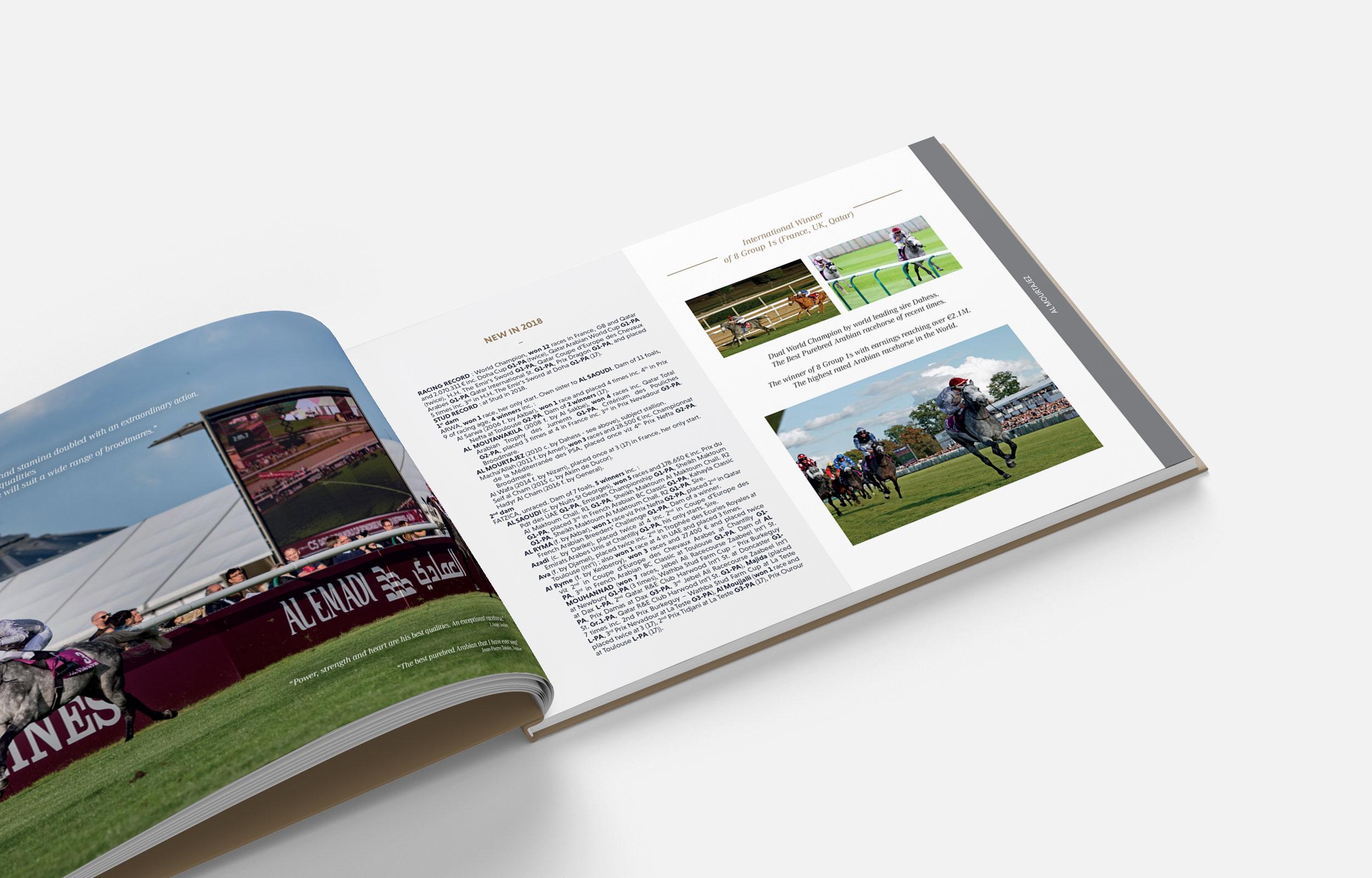 book-arabians-brochure2.jpg